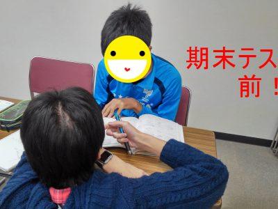 【加東かがやき】11月23日活動報告 with マーティン